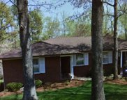 303 Lions Club Road, Greenville image