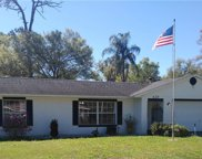 628 Northern Oaks Avenue, Deland image