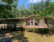 21141 Wolf Branch Road, Mount Dora image