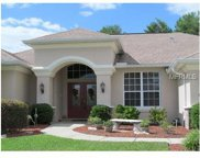10131 Southern Breeze Court, Brooksville image