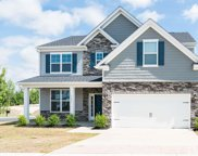3901 White Kestrel Drive, Raleigh image