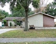 2882 Cathy Lane, Clearwater image