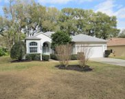 10078 Sw 192nd Circle, Dunnellon image