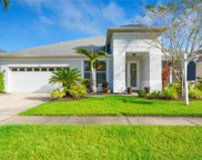 12715 Tar Flower Drive, Tampa image