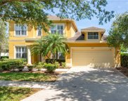 6145 Native Woods Drive, Tampa image