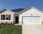 227 Quick Silver Court, Graniteville image