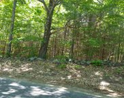 Lot 38 Old Stage & Lovell Lake Roads, Wakefield image