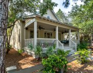 65 Red Cedar Way, Santa Rosa Beach image
