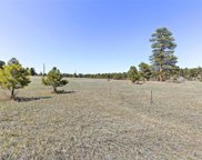 4506 Parmalee Gulch Road, Indian Hills image