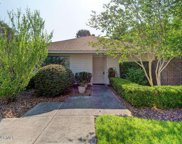 930 Summerlin Falls Court, Wilmington image