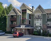 1000 Olde Eastwood Village  Boulevard Unit #102, Asheville image