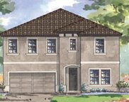 12824 Satin Lily Drive, Riverview image