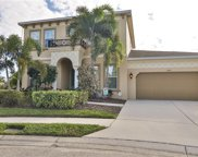 6904 Covington Stone Avenue, Apollo Beach image