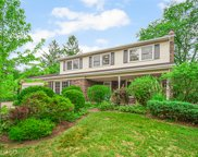 1541 Snowberry Court, Downers Grove image