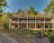 220 Dark Horse Lane, Tryon image