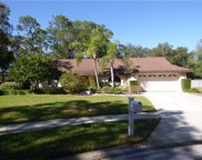5202 Dwire Court, Tampa image