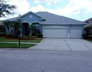 10508 Chelmsford Way, Tampa image