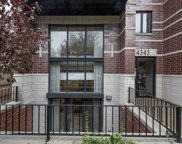 4345 South Indiana Avenue Unit 1N, Chicago image