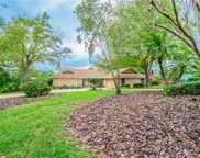 3246 Autumn Drive, Palm Harbor image