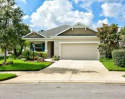 11743 Fennemore Way, Parrish image