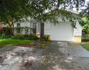 11105 Cherrywood Lane, Riverview image