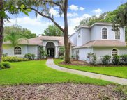 6231 Wild Orchid Drive, Lithia image