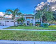 1019 Sweet Breeze Drive, Valrico image