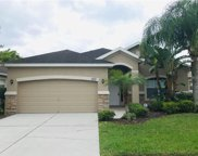 7723 Tangle Brook Boulevard, Gibsonton image
