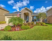 12324 Streambed Drive, Riverview image