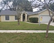 1234 Lake Piedmont Circle, Apopka image