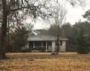 16360 Tiger Trail, Spring Hill image