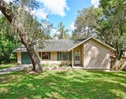 1541 Cobble Lane, Mount Dora image