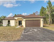 4327 SE 12th Ave, Naples image