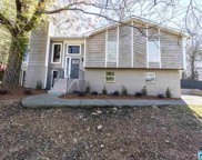 1131 Dearing Downs Dr, Helena image
