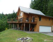 211 Swift View Drive, Cougar image