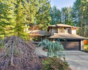 12915 47th Ave NW, Gig Harbor image
