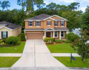 12205 Swaying Moss Circle, Riverview image