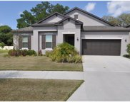 11324 American Holly Drive, Riverview image