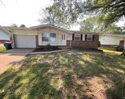 11020 Linnell  Drive, St Louis image