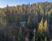 2810 Up Manley Creek Rd, Priest River image