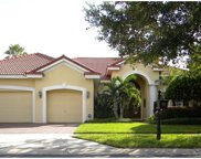 17232 Emerald Chase Drive, Tampa image