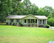 167 Forest Chapel Road, Hartselle image