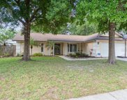 1510 Kyle Court, Valrico image