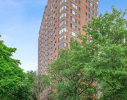3100 N Lake Shore Drive Unit #1110, Chicago image