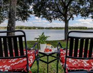 14535 Cotswolds Drive, Tampa image