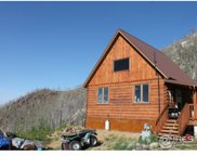 790 Timber Pass Ln, Bellvue image