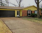 11938 Roseview, St Louis image