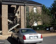 4601 PINECREST OFFICE PARK DRIVE Unit #D, Alexandria image