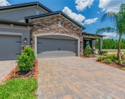 19349 Hawk Valley Drive, Tampa image