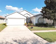 11142 Rodeo Lane, Riverview image